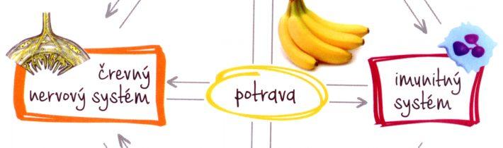 Probiotiká afermentácia